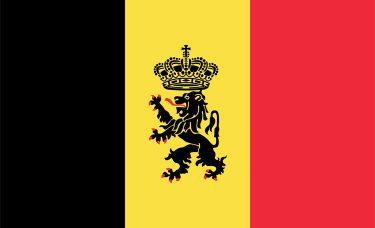 Zwrot Podatku z Belgii, Fiche 281.10, Tax on Web