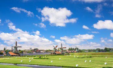Rozliczenie dochodów z Holandii krok po kroku